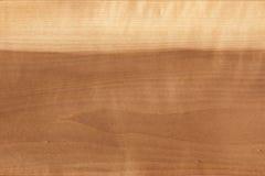 чувствительная древесина текстуры картины точного зерна Стоковые Фото