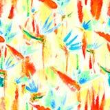 Чувствительное тропического цветка повторения краски связи акварели печати картины джунглей безшовного бесконечного пастельное иллюстрация вектора