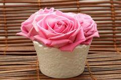 чувствительные розовые розы Стоковое фото RF