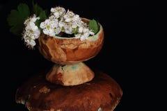 Чувствительные цветки elderberry в керамической чашке на перевернутом поддоннике против черной предпосылки Пары чая как стойка ва стоковые фотографии rf