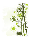 чувствительный вал листьев Стоковое фото RF