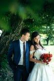 Чувствительный внешний портрет шикарных новобрачных обнимая под деревом Усмехаясь невеста брюнет держит и Стоковая Фотография RF