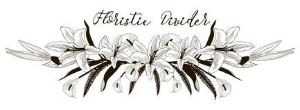Чувствительный флористический рассекатель текста Элемент дизайна цветка лилии бесплатная иллюстрация