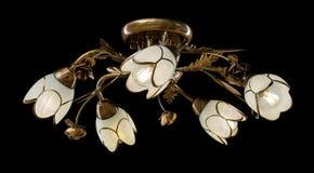 Чувствительная люстра изолированных ламп цветка на черноте Стоковая Фотография RF