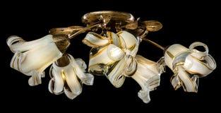 Чувствительная люстра изолированных ламп цветка на черноте Стоковое Изображение RF