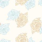 чувствительные розы Стоковое фото RF