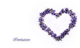 Чувствительные фиолеты весны в форме сердца на белой предпосылке 1 приглашение карточки Стоковые Фото
