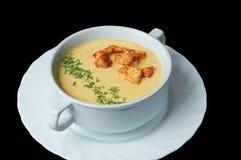 Чувствительный суп сливк сыра с гренками и укропом Стоковые Изображения RF