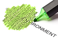 чувствовали, что зеленое пер наклонила экологичность принципиальной схемы Стоковые Изображения RF