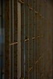 чугунная балюстрада Стоковая Фотография RF