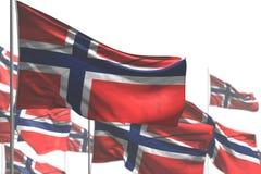 Чудесная иллюстрация флага 3d пиршества - много флагов Норвегии развевать изолированных на бело- изображении с выборочным фокусом иллюстрация вектора