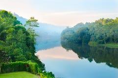 Чудесное утро на тропическом реке Стоковая Фотография