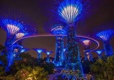 Чудесные сады заливом, Сингапуром стоковая фотография rf