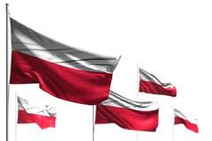 Чудесные 5 флагов Польши волна изолированная на бело- изображении с мягким фокусом - любой иллюстрацией флага 3d праздника бесплатная иллюстрация