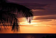 Чудесный заход солнца на Шри-Ланка Стоковое Изображение