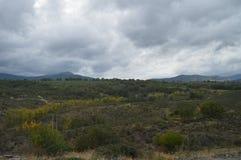 Чудесный зеленый луг в Campillejo 18-ое октября 2013 Campillejo, черный городок, Ла Mancha Гвадалахары, Кастилии, Испания Сельски стоковое фото