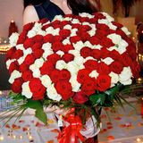 Чудесный и очень большой букет свежего красного цвета и белых роз для дня ` s валентинки, 8-ое марта, дня рождения etc Стоковые Изображения RF