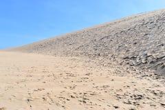 Чудесный ландшафт на тропе на заповеднике Robberg в заливе Plettenberg, Южной Африке стоковые фото