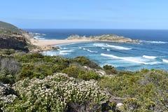 Чудесный ландшафт на тропе на заповеднике Robberg в заливе Plettenberg, Южной Африке стоковая фотография