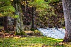 Чудесный малый водопад Стоковые Изображения RF