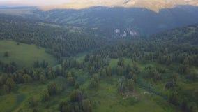 Чудесный полет к красивой долине с лесом в горах зажим Красивая зеленая долина окруженная мимо акции видеоматериалы