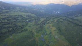 Чудесный полет к красивой долине с лесом в горах зажим Красивая зеленая долина окруженная мимо видеоматериал