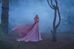 Чудесный enchantress herbalist со светлыми волосами, одетыми в дорогом роскошном длинном мягком розовом платье, держа стоковое изображение rf
