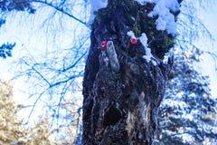 Чудовище феи главного леса деревянное стоковые фотографии rf