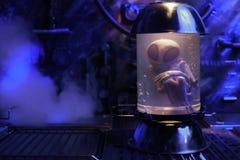 Чужеземец внутри пробирки Стоковые Изображения RF