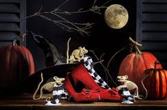 Чулки мышей хеллоуина рубиновыми Striped тапочками стоковое изображение rf