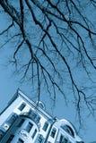 Чуть-чуть ветви дерева над голубым небом и fasade античного здания в городе Москвы Голубое изображение подкраской Стоковое фото RF