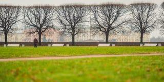 Чуть-чуть деревья и лужайка в Санкт-Петербурге, России стоковое фото rf