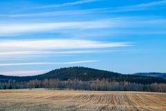 Чуть-чуть коричневое поле в предыдущей весне Стоковое Фото