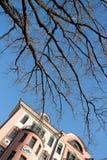 Чуть-чуть ветви дерева над голубым небом и fasade античного здания в городе Москвы Стоковые Фотографии RF
