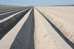 чуть-чуть ждать весны сельскохозяйствення угодье Стоковые Изображения RF