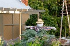 Чучело стоит в зеленом саде во время захода солнца стоковая фотография