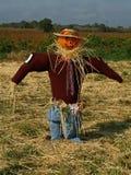 чучело тыквы Стоковая Фотография RF