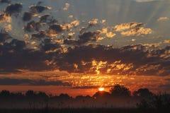 Чудесное небо на восходе солнца Стоковые Изображения RF