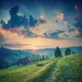 Чудесное прикарпатское утро Винтажные цветы Стоковое Изображение RF