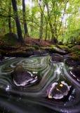 Чудесное река около Pregue, центральная Богемия осени, чехия Стоковые Фото