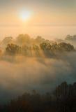 Чудесное утро осени Стоковая Фотография