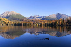 Чудесный взгляд озера в осени Стоковое Фото