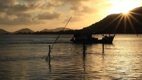 Чудесный свет в реке сток-видео