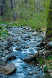 Чудо на естественных интересах Sedona Аризоны США Стоковые Фото