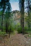 Чудо на естественных интересах Sedona Аризоны США Стоковое Изображение RF