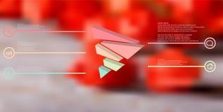 шаблон иллюстрации 3D infographic с выбитым треугольником случайно разделяемым до 5 перенесенных частей иллюстрация вектора