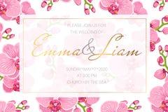 Шаблон карточки приглашения события свадьбы Прямоугольная рамка границы украшенная с яркими розовыми цветками фаленопсиса орхидеи иллюстрация вектора