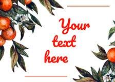 Шаблон карты приглашения акварели реалистический - зацветая апельсин бесплатная иллюстрация