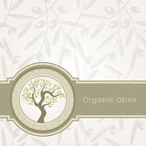 шаблон оливки масла ярлыка иллюстрация штока