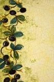 шаблон оливок Стоковые Фотографии RF